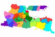 11 Daerah Di Jatim KLB Demam Berdarah
