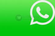 WhatsApp Perkenalkan Fitur Panggilan Suara