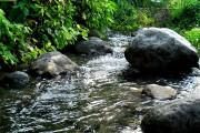 Wonosalam Bentuk Pokja Lindungi Mata Air