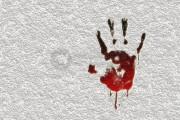 Investigasi-2 Kontras, WALHI, LBH, Soal Lumajang