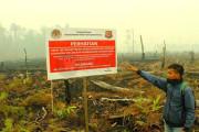 Walhi : Ada Modus Baru Bakar Hutan