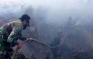 Presiden Tunjuk Menko Tangani Kebakaran Hutan