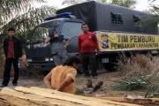 LSM Desak Presiden Perpanjang Moratorium Hutan