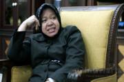 Walikota Surabaya Minta Satwa KBS Dikembalikan