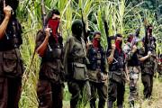 Gerilyawan ELN Bebaskan Wali Kota Yang Diculik