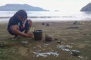 Jarum Suntik Bekas Cemari Pantai Cengkrong