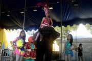 Oriental Circus Diserbu Penonton Di Akhir Pekan