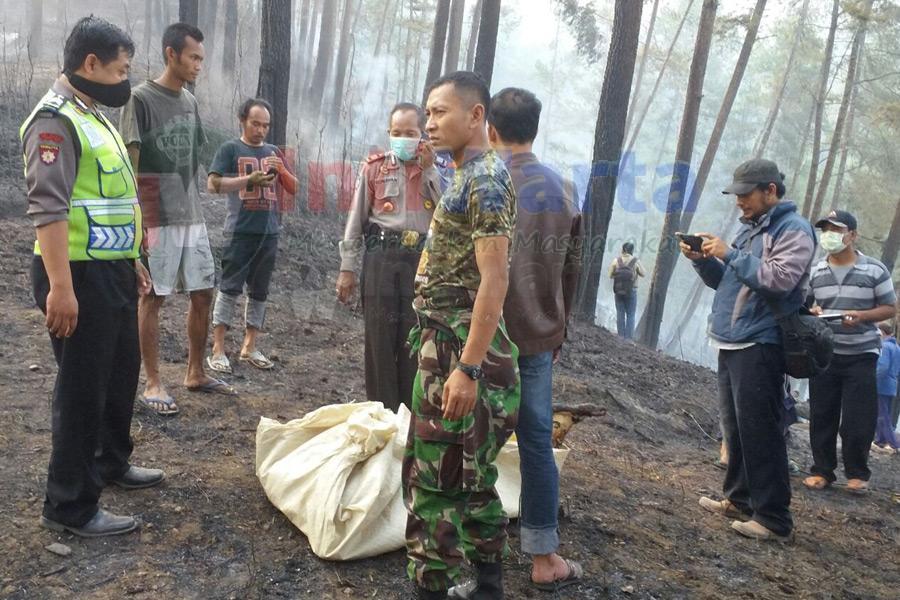 Empat Orang Tewas Terbakar Di Hutan Ponorogo