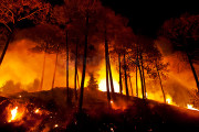 Kebakaran Gunung Lawu Nyaris Padam