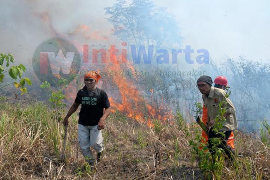 Walhi Rilis Perusahaan Dibalik Kebakaran Hutan