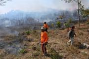 Cargil Respon Walhi Soal Kebakaran Hutan