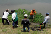 INSPIRASI Kuatkan Tebing Kali Surabaya