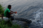 Kemarau, Industri Berlomba Cemari Kali Brantas